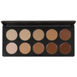 blush-professional-10-colour-concealer-palette
